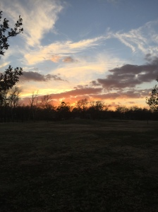 Seen on my run: beautiful Texas sunset
