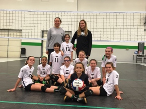 Our girls, Champions of the 11s division!