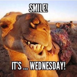Stolen from my cohort in crime, Carmen, who posts Hump Day pics EVERY Wednesday!
