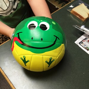 happy frog volleyball
