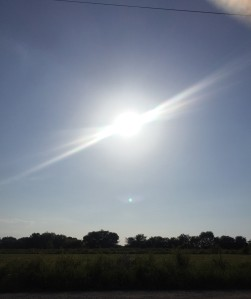 I have no complaints about this hot, Texas sun!  Summer is the best time of the year!
