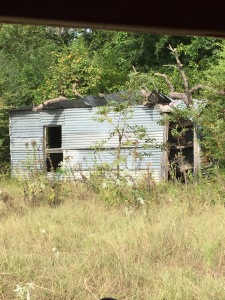 The cabin my oldest nephew built for high school weekend campouts has definitely seen better days!