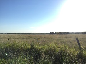 I love running in the country in Texas. Even the fields are breathtaking.